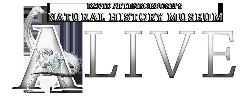 David Attenborough S Natural History Museum Alive  Movie