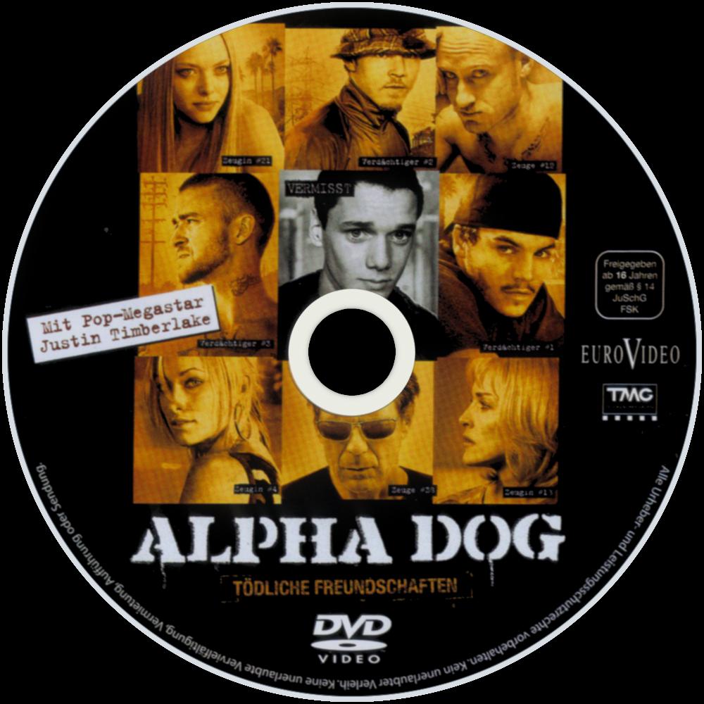 Dog In Movie Alpha