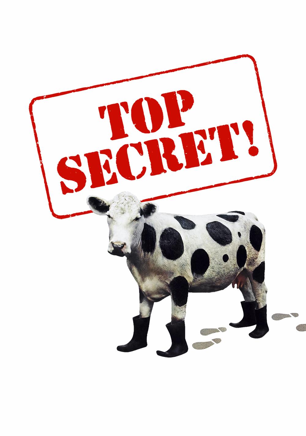 Top Secret Film Stream