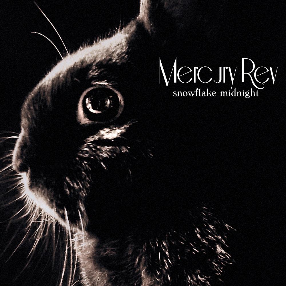 Mercury Rev Net Worth