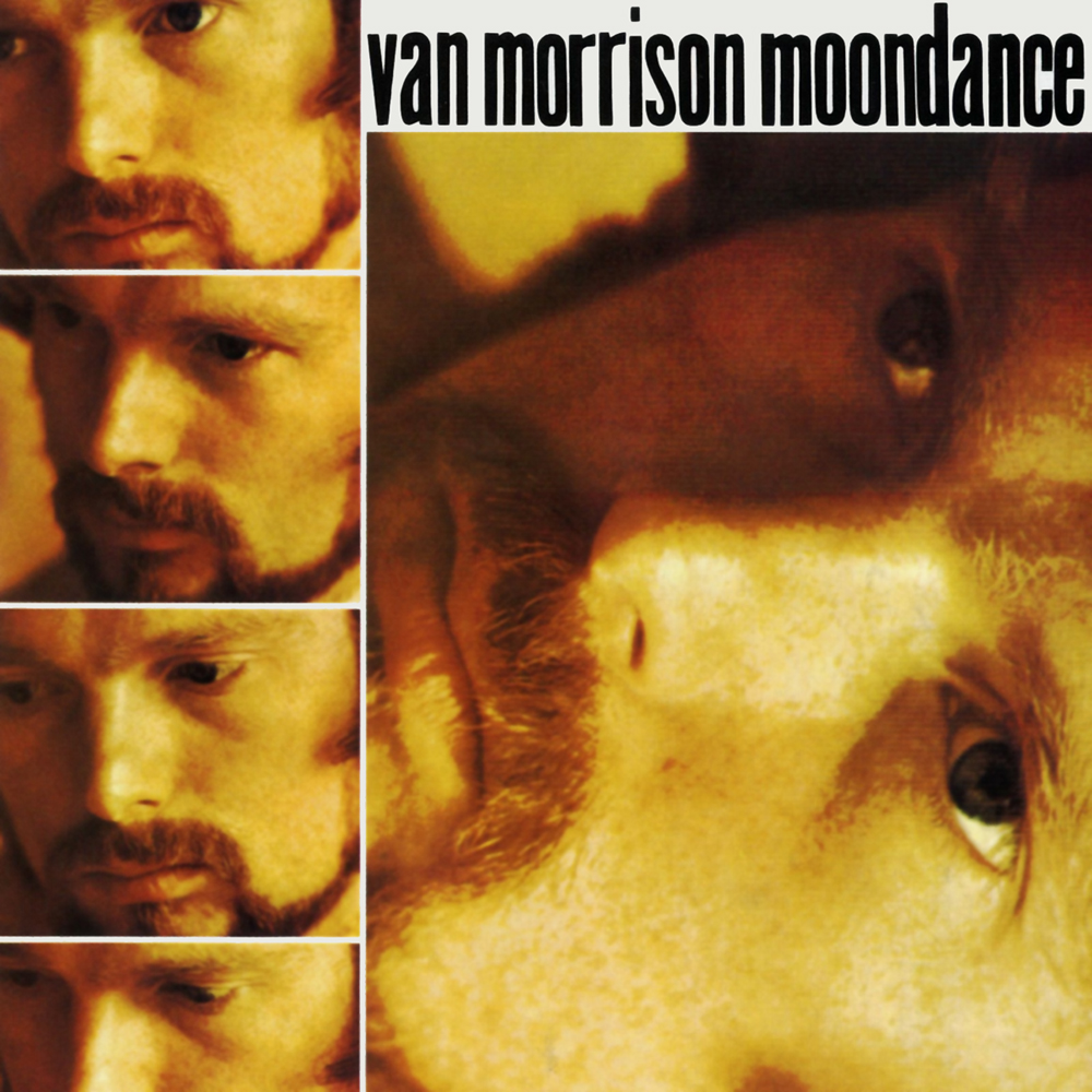 Van Morrison Magic Time Van Morrison | Music f...