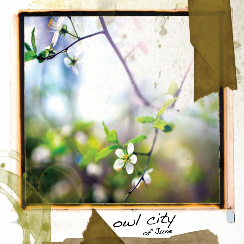 Owl City | Music fanart | fanart.tv Of June Owl City