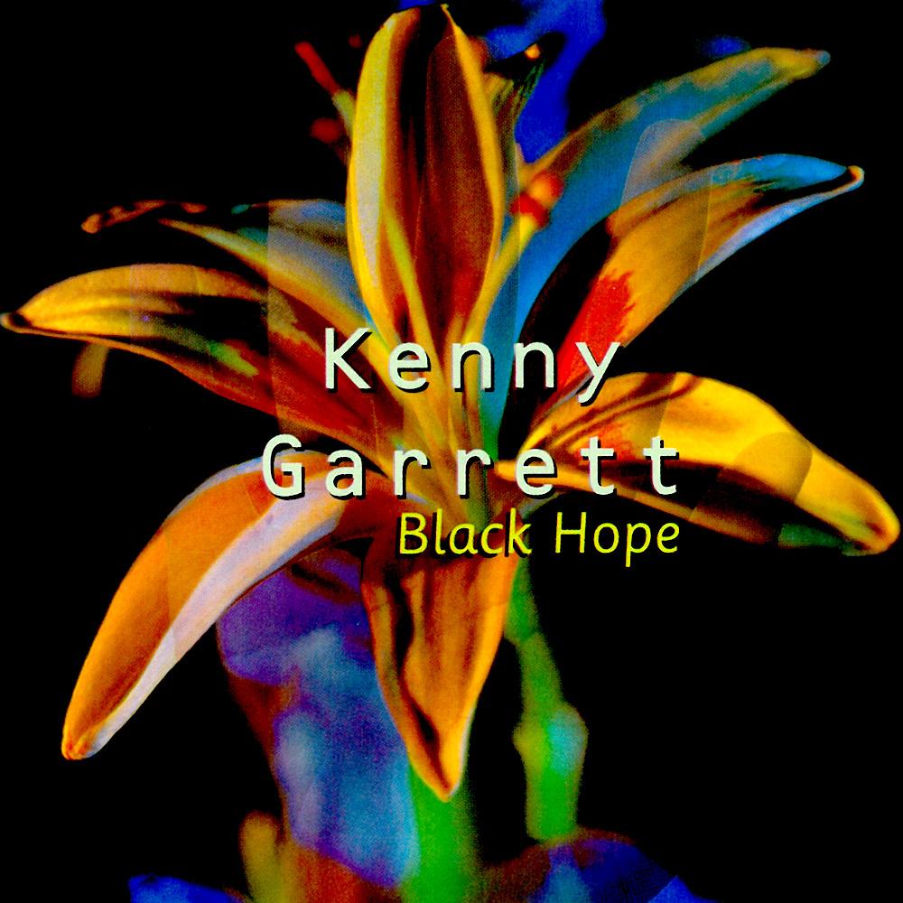 black-hope-537a73d80b130.jpg