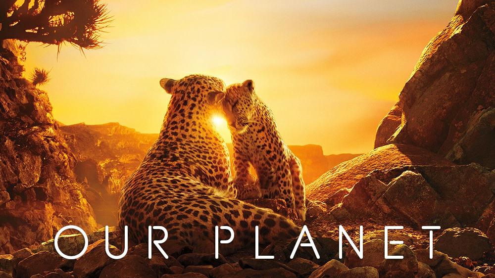 Our Planet (2019) | TV fanart | fanart tv
