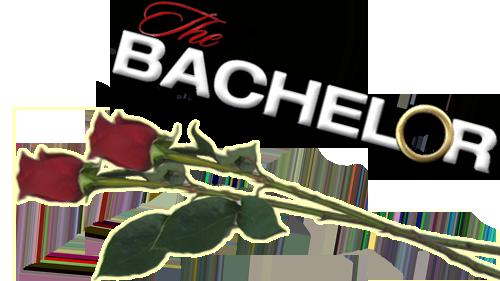 The Bachelor   TV fanart   fanart.tv