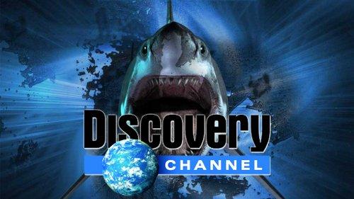 [Obrázek: discovery-channel-documentaries-4f5b9779457b5.jpg]